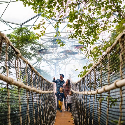 Family walking over the wobbly bridge in the Rainforest Biome