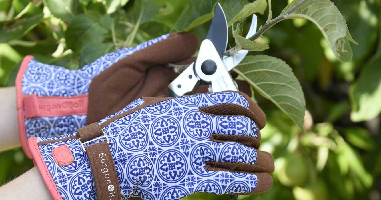 https://www.edenproject.com/shop/sites/default/files/revslider/image/gardening-gloves-carousel_0.jpg