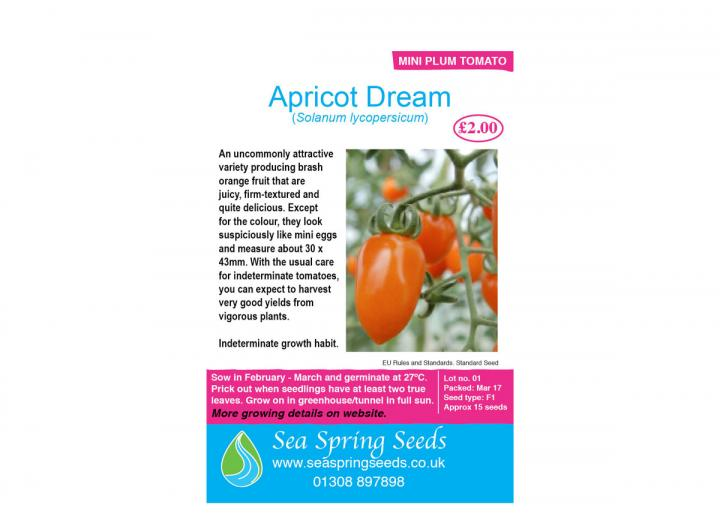 'Apricot Dream' tomato seeds from Seaspring Seeds