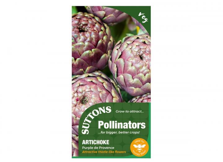 Artichoke purple de provence seeds