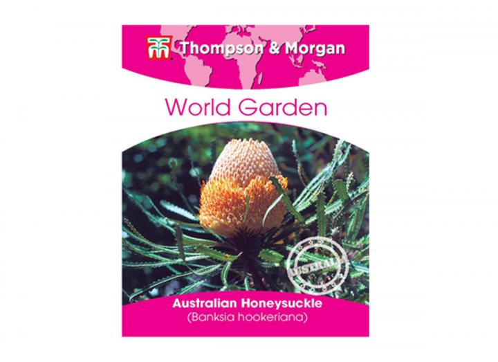 Thompson & Morgan world garden australian honeysuckle seeds