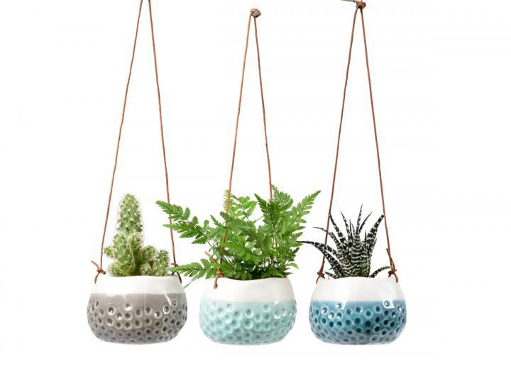 Baby dotty indoor hanging plant pot gift set