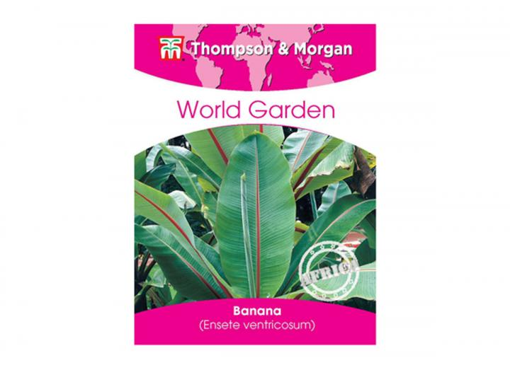 Thompson & Morgan world garden banana seeds