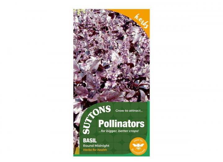 Basil 'Round Midnight' seeds, part of the pollinators range from Suttons