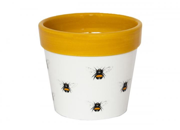 Botanical bee print plant pot from Ivyline, available in 7cm, 10cm & 13cm