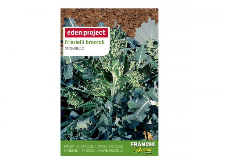 Friarielli broccoli 'Spigariello' – Brassica oleracea seeds