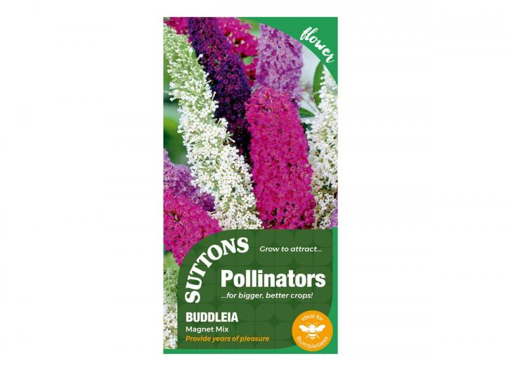 Buddleia 'Magnet Mix' seeds, part of the pollinators range from Suttons