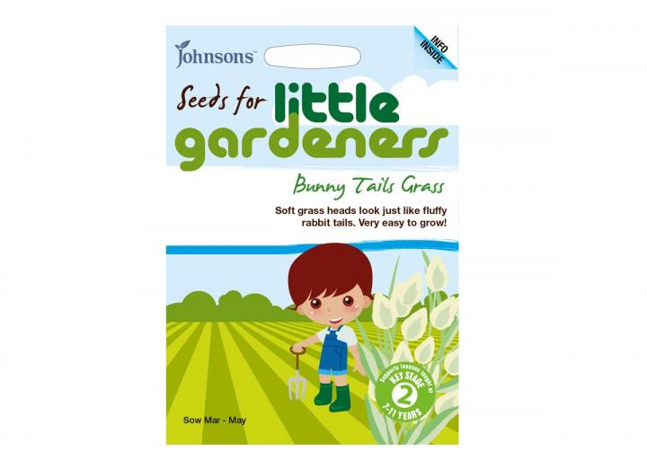 Seeds for little gardeners - bunny tail grass