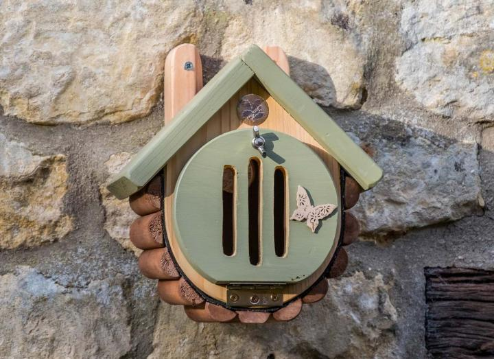Butterfly / moth house from Wildlife World