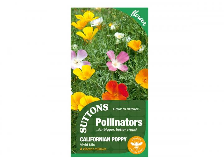 Californian Poppy 'Vivid Mix' seeds, part of the pollinator range from Suttons