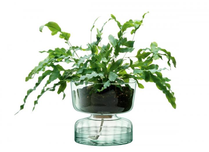 Self-watering planter, part of the Canopy range from LSA International