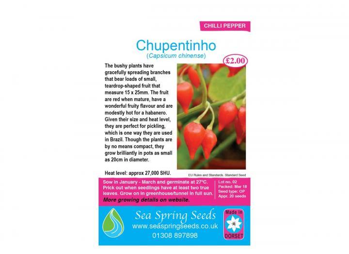 Chupentinho chilli seeds
