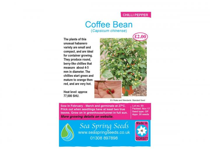 Coffee bean chilli seeds from Sea Spring Seeds