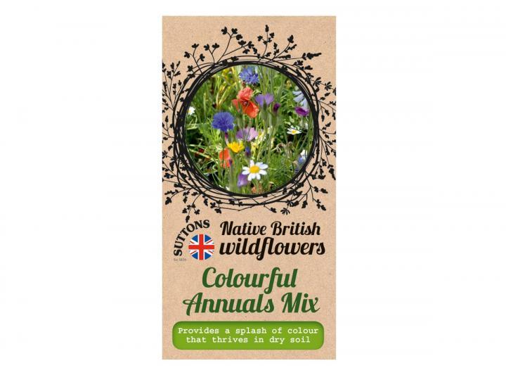 Native British wildflower seeds colourful annuals mix