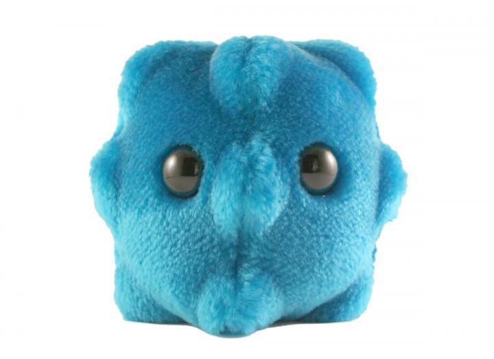 Giant Microbes - Common Cold (Rhinovirus)