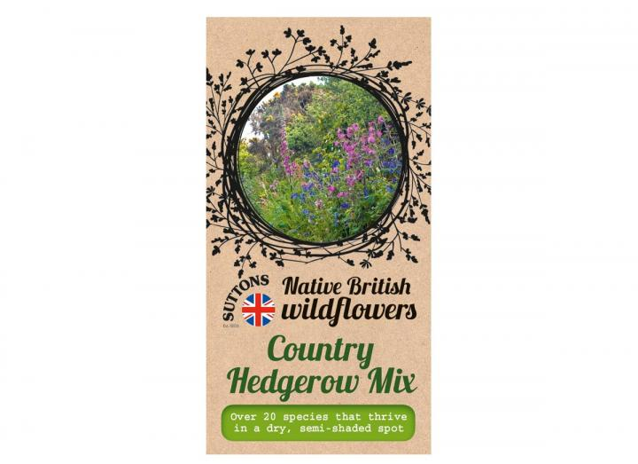 Native British wildflower seeds country hedgerow mix