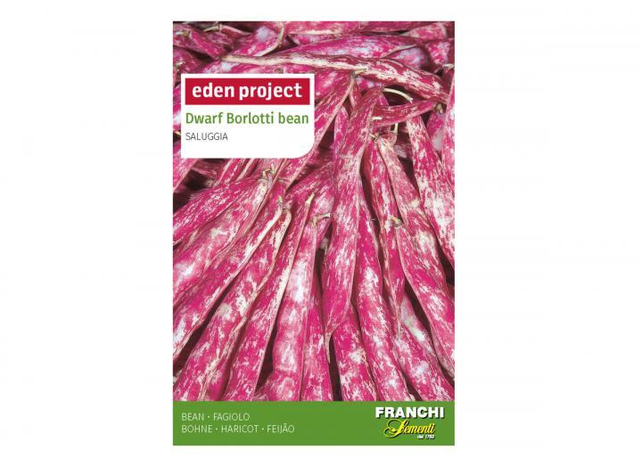 Dwarf Borlotti bean 'Saluggia' – Phaseolus vulgaris seeds
