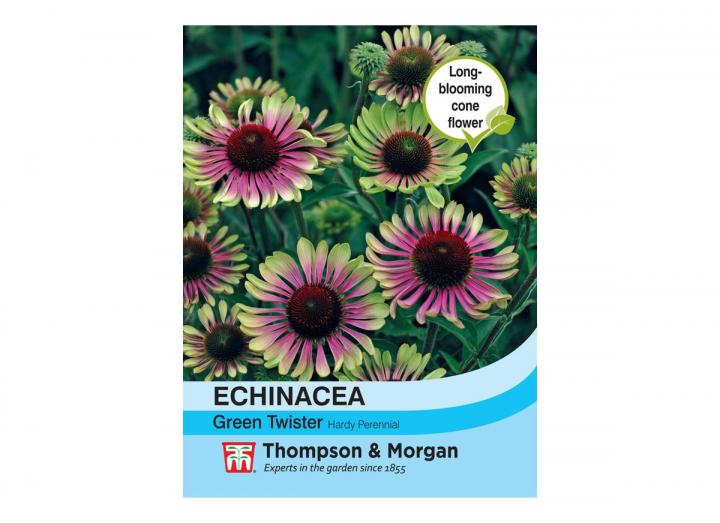 Echinacea 'Green Twister' seeds from Thompson & Morgan