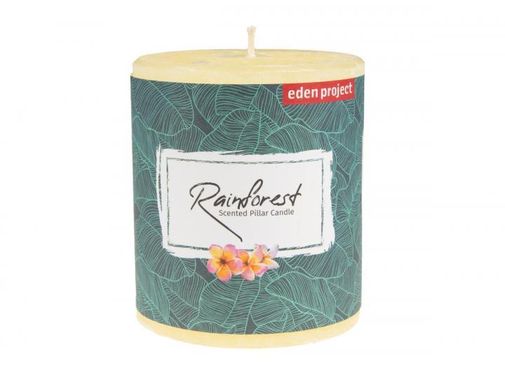 Eden Project rainforest scented pillar candle