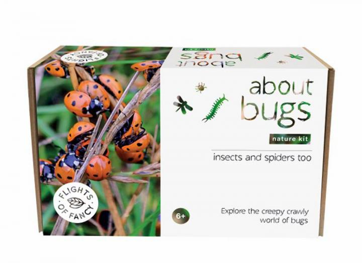 About bugs nature kit