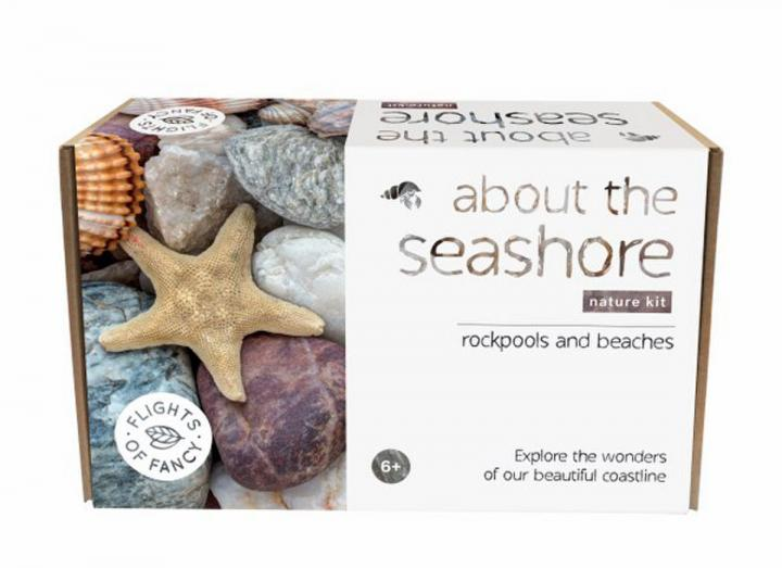 About the seashore nature kit