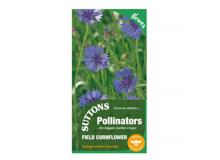 Field Cornflower seeds, part of the Pollinator range from Suttons Seeds