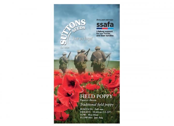 Field poppy papaver rhoeas seeds