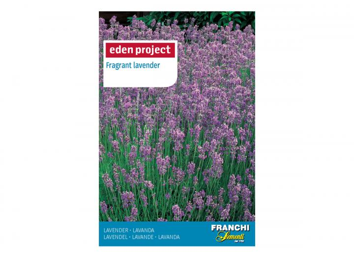 Fragrant lavender seeds