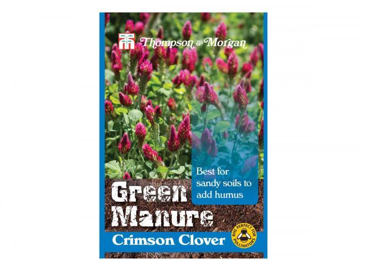 Green manure crimson clover seeds