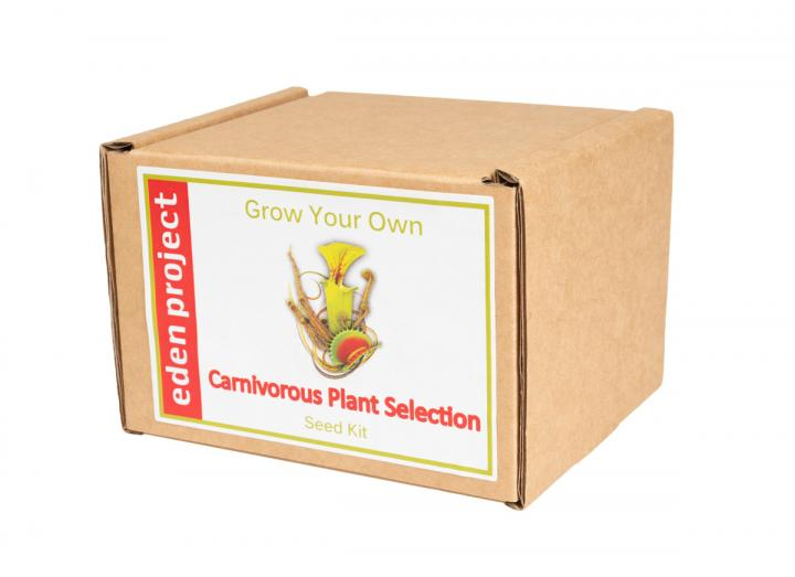 Grow Your Own Carnivorous Plants Seed Kit