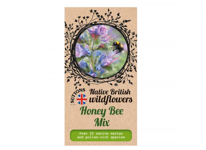 Native British wildflower seeds honey bee mix