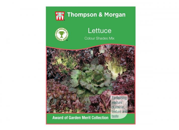 Lettuce 'Colour Shades Mix' seeds from Thompson & Morgan
