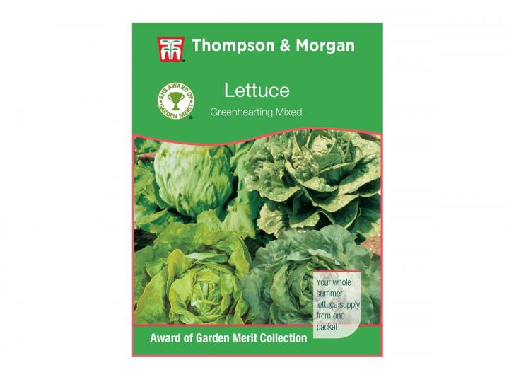 Lettuce 'Greenhearting Mixed' seeds from Thompson & Morgan