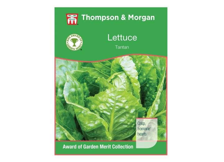 Lettuce 'Tantan' seeds from Thompson & Morgan
