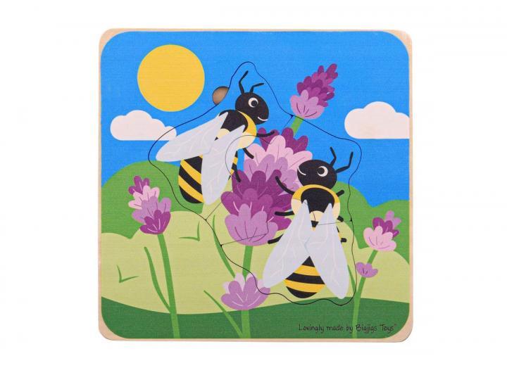 Honeybee Lifecycle layer puzzle