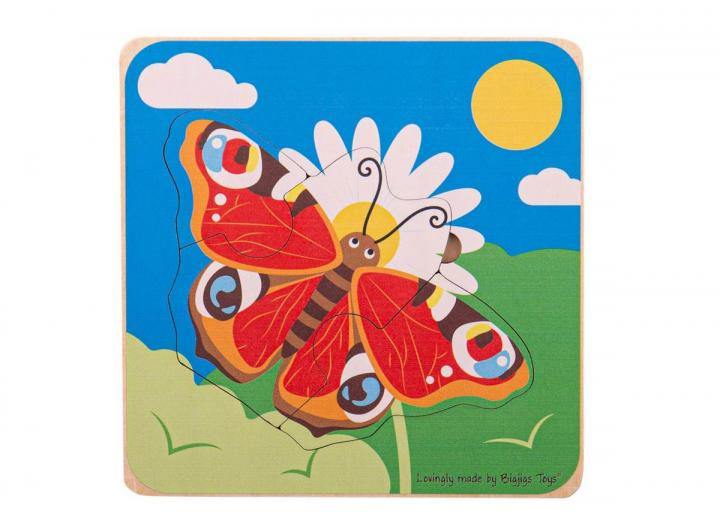 Butterfly lifecycle layer puzzle