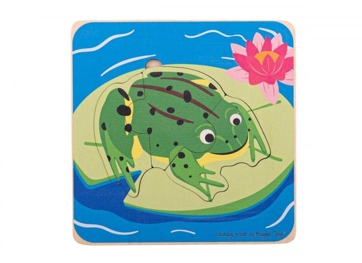 Frog Lifecycle layer puzzle