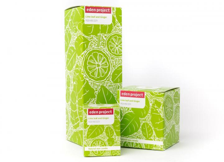 Lime leaf & ginger fragrance collection