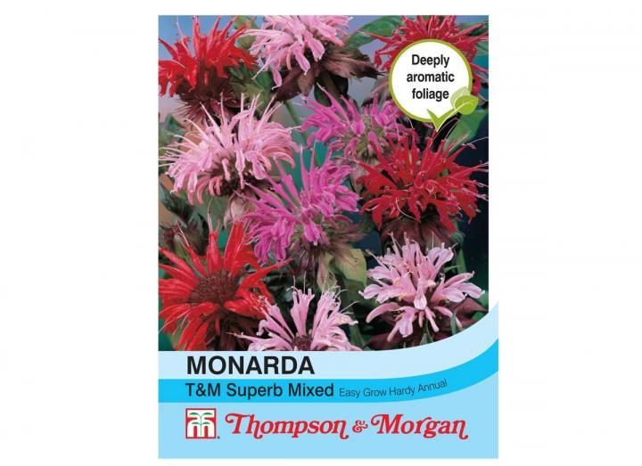 Monarda T&M superb mix seeds