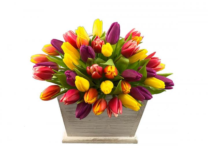 Tulips bouquet, hand-tied by Tregothnan especially for Mother's Day