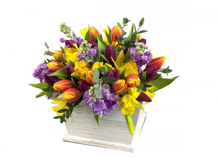 Tulips & stocks bouquet, hand-tied by Tregothnan especially for Mother's Day