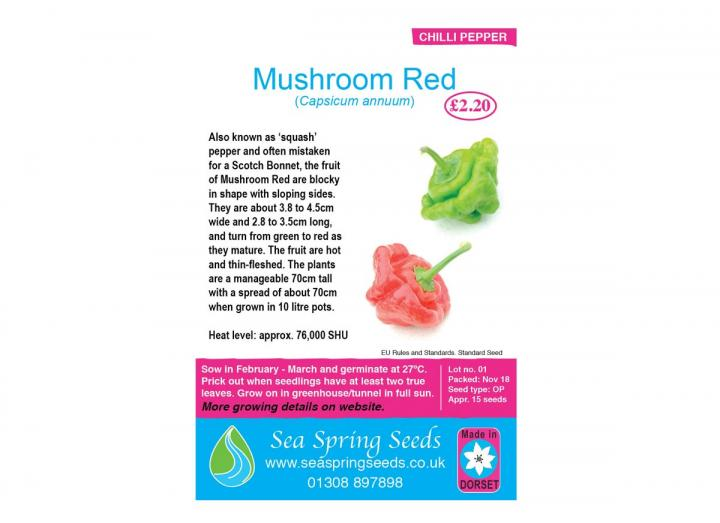 Mushroom red chilli seeds from Sea Spring Seeds