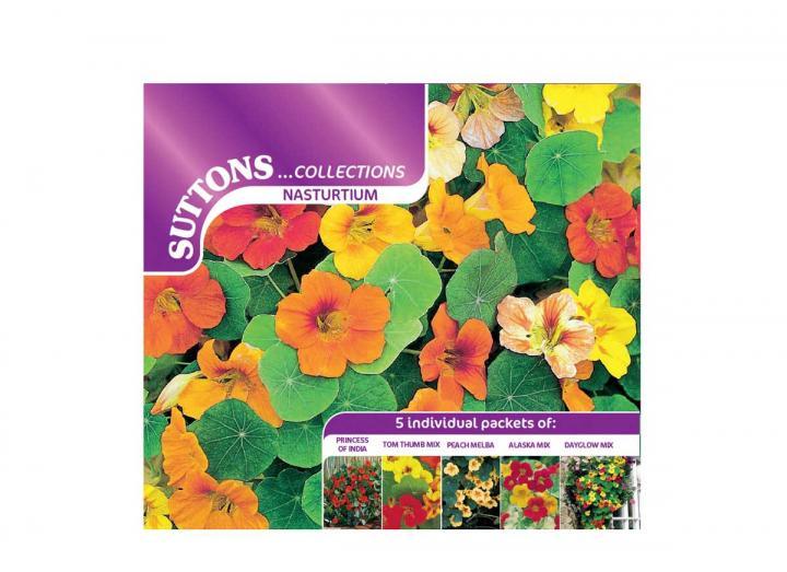 Suttons nasturtium collection seeds