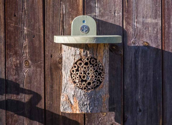 Natural bee log part of the National Trust range from Wildlife World