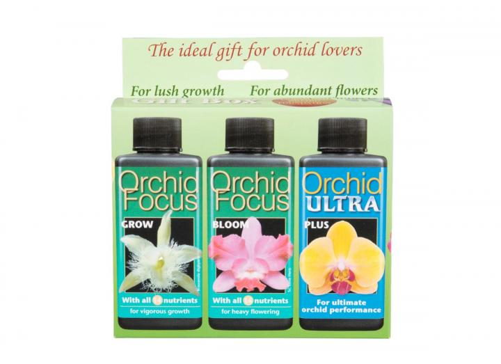 Orchid care gift box