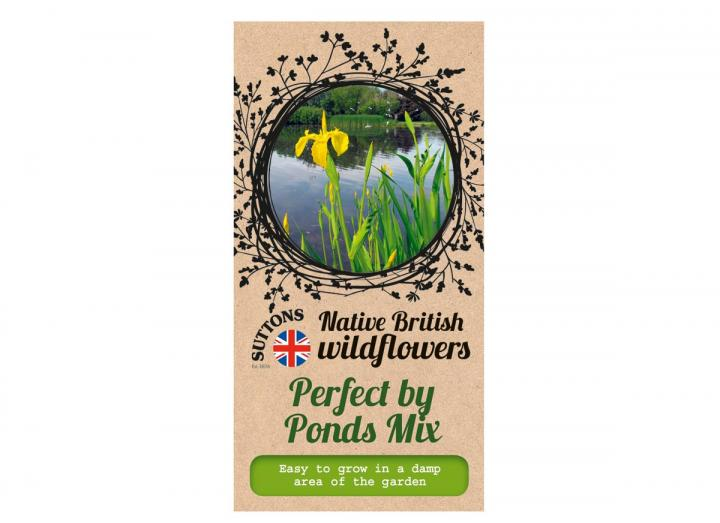 Native British wildflower seeds perfect by ponds mix