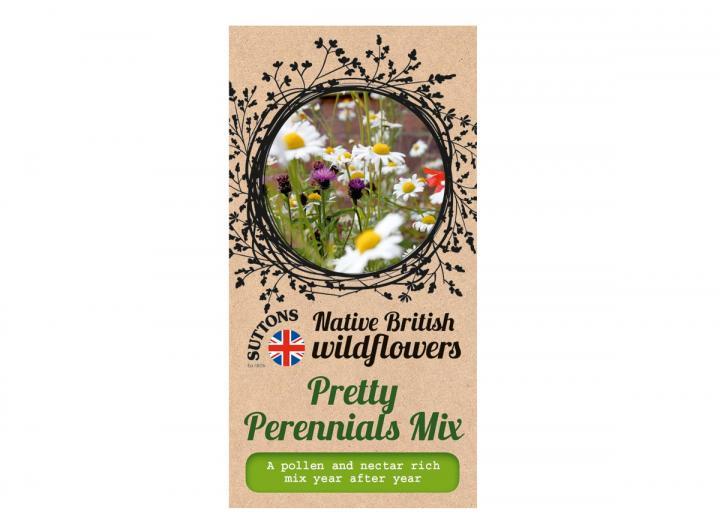 Native British wildflower seeds pretty perennials mix