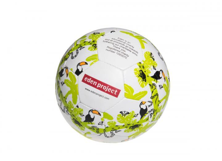 Eden football