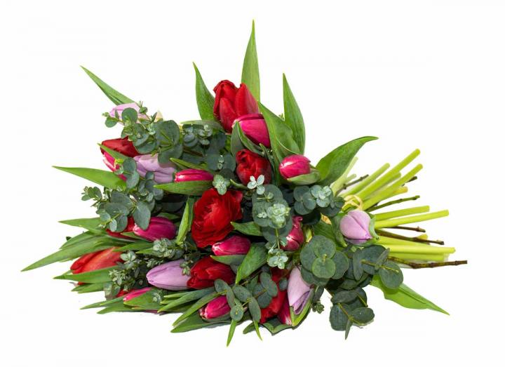 Valentine's Day flowers from the Tregothnan estate