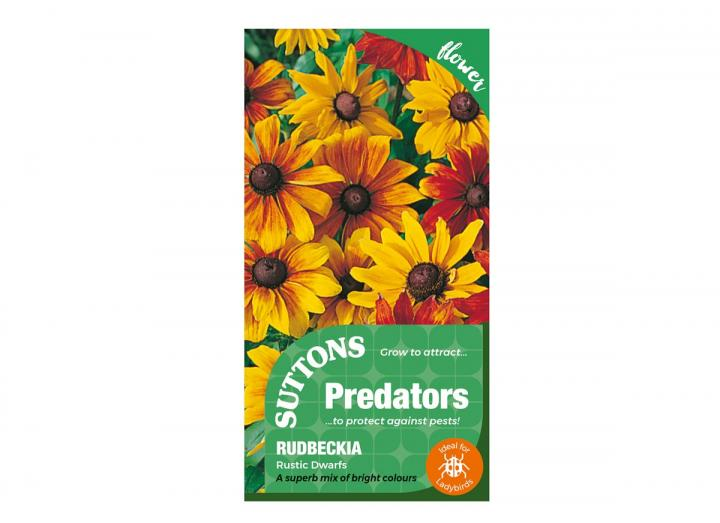 Rudbeckia 'Rustic Dwarfs' seeds, part of the Predators range from Suttons